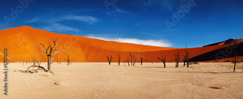 Spoed Foto op Canvas Zandwoestijn Namib Desert, Sossusvlei, Namibia