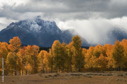 Photo  Storm, Aspens and Tetons