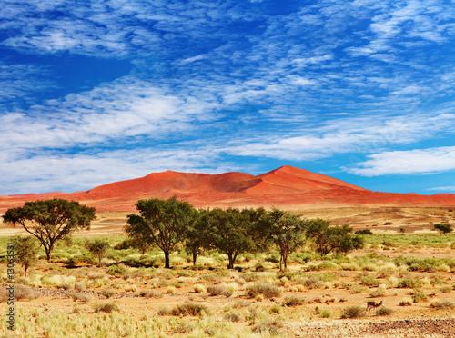Obrazy na płótnie Canvas Namib Desert, Sossufley, Namibia