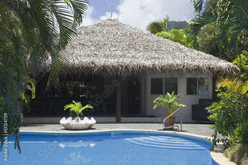 Fotografie, Obraz  Palm Thatched Hut with Pool