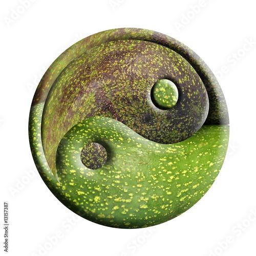 Valokuva  yin-yang bio