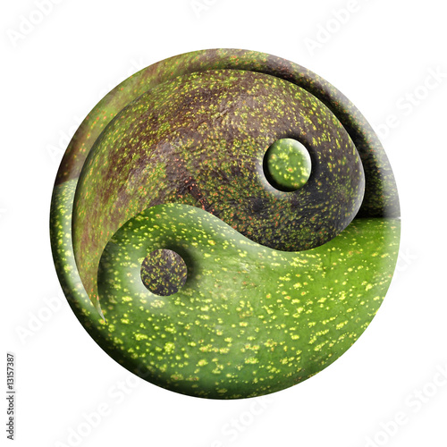 Fényképezés  yin-yang bio
