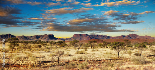 Photo Stands Africa Kalahari Desert, Namibia