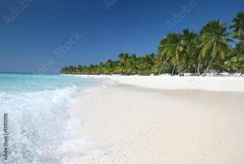 Fotografie, Obraz  Saona: Sand Beach, Caribbean Ocean and Palm Trees