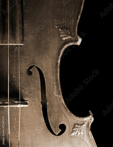 Part of vintage violin