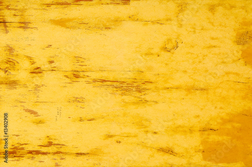 Foto op Canvas Weg in bos grunge background with space for text or image.