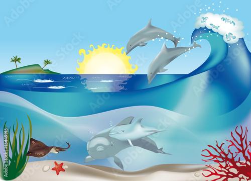Poster Dolfijnen delfini che saltano