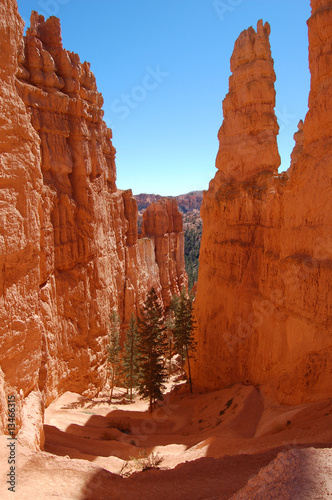 Photo Stands Cuban Red Canyon Trail