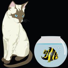 Cat Watching Fish