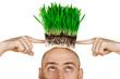 Leinwanddruck Bild - Grass hair
