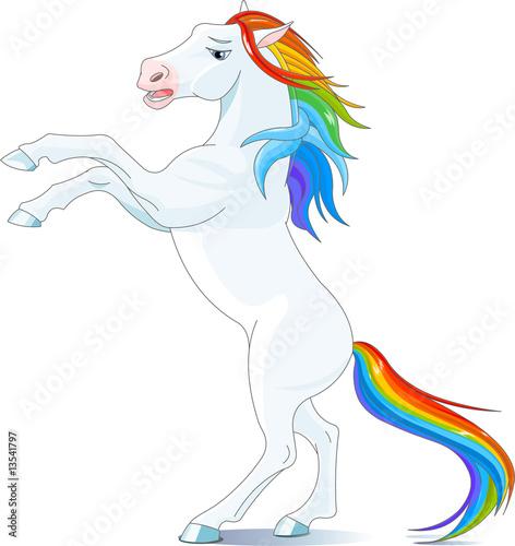 Poster Pony Rainbow horse