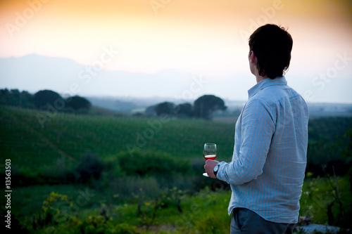 sunset at vineyard