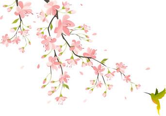 NaklejkaCherry blossom