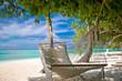 Hängematte unter Palmen am Strand