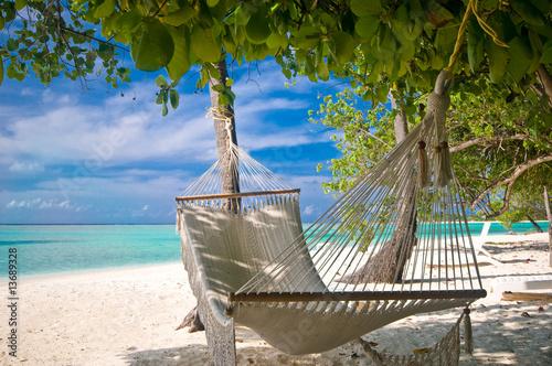 Foto Rollo Basic - Hängematte unter Palmen am Strand (von Loocid GmbH)