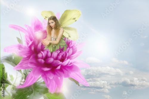 Fototapeta Fairy and Flower