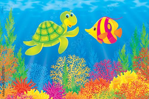 Foto-Stoff - Coral fish and turtle (von Alexey Bannykh)