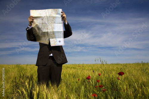 Fotografie, Obraz  businessman lost in field using a map