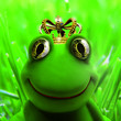 canvas print picture - Kingfrog
