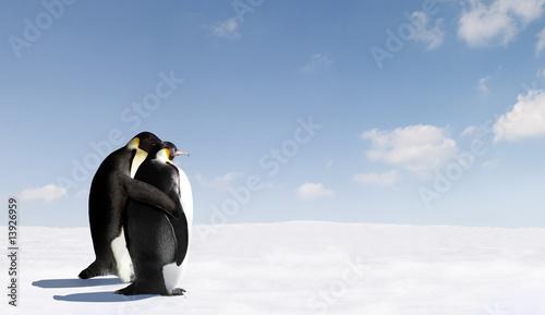 Photo sur Toile Pingouin Penguin Love