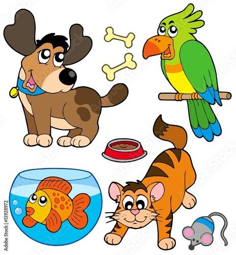 kolekcja-zwierzat-kreskowki