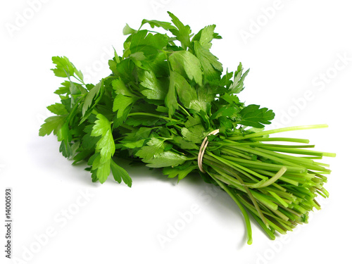 Fotografía  Bouquet of parsley on white background.