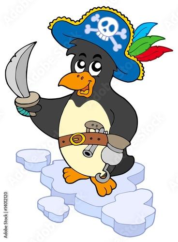 Photo sur Toile Pirates Pirate penguin