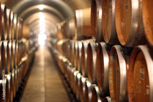 Wine barrels Wallpaper Mural