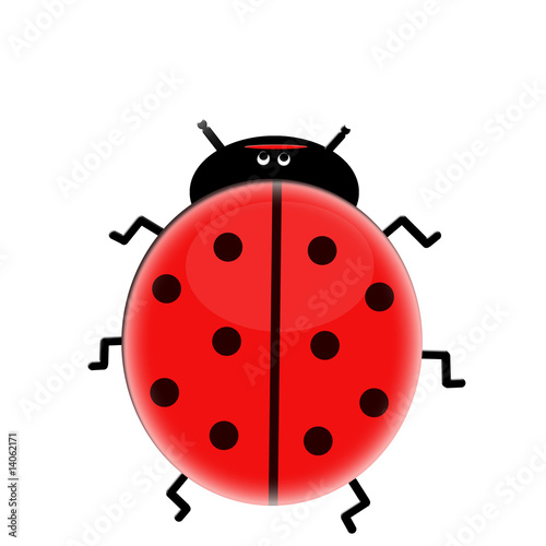 Poster Lieveheersbeestjes Sweet lady bug isolated on white
