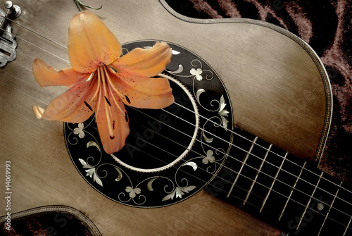Nostalgia with vintage guitar and lily