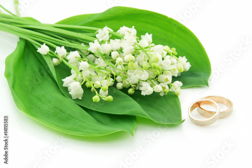 Wall Murals Lily of the Valley and Golden Rings Isolated on White