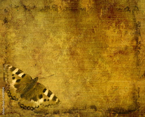 Printed kitchen splashbacks Butterflies in Grunge Grunge background