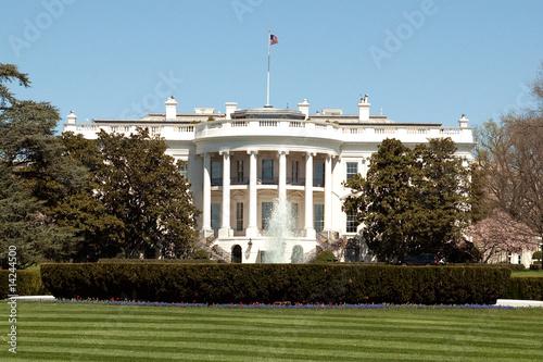 Obraz na plátne The White House