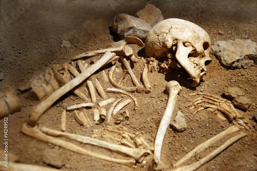human bones Canvas Print