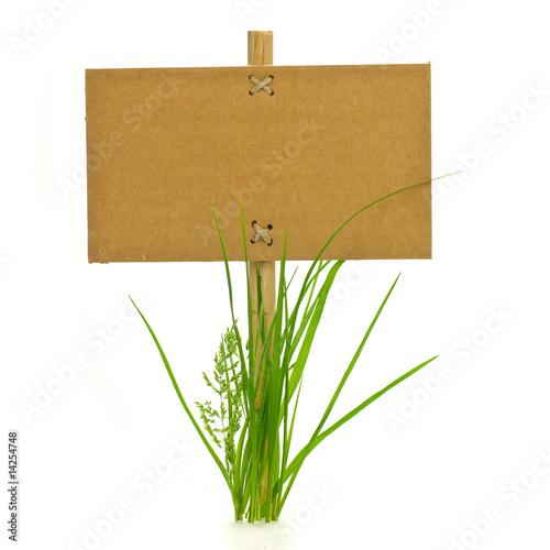 Fotografie, Obraz  panneau d'information et brin d'herbes détouré - fond blanc