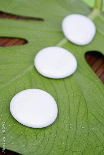 Foto-Vertikallamellen zum Austausch - galets blancs relaxants (von chris32m)