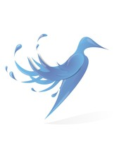 Bird Of Water In A White Background. Illustration.