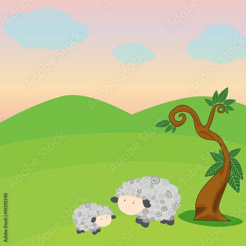 Wall Murals Cats Sheep and lamb