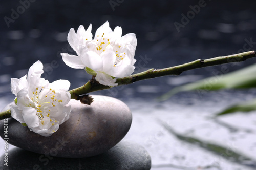 Spoed Fotobehang Spa Spa still life with black stones and bamboo leafs