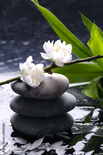 Deurstickers Spa Black massage stones with cherry ,petal on water drops