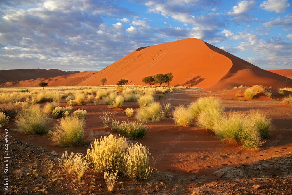 Fototapety, obrazy: Desert landscape, Sossusvlei, Namibia, southern Africa