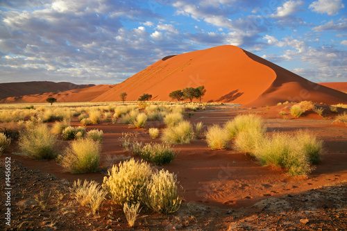 Poster Deep brown Desert landscape, Sossusvlei, Namibia, southern Africa
