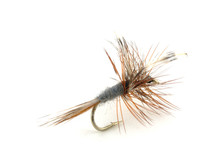 Dry Trout Fishing Fly