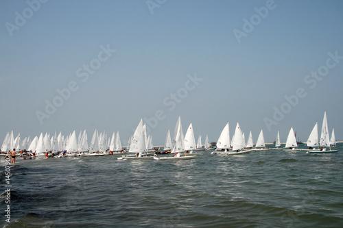 Fotografie, Obraz  sailing race