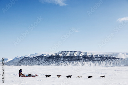 Cadres-photo bureau Arctique Dog Sled Expedition