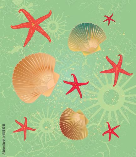 Foto-Stoff bedruckt - Seashell background (von ssonia)