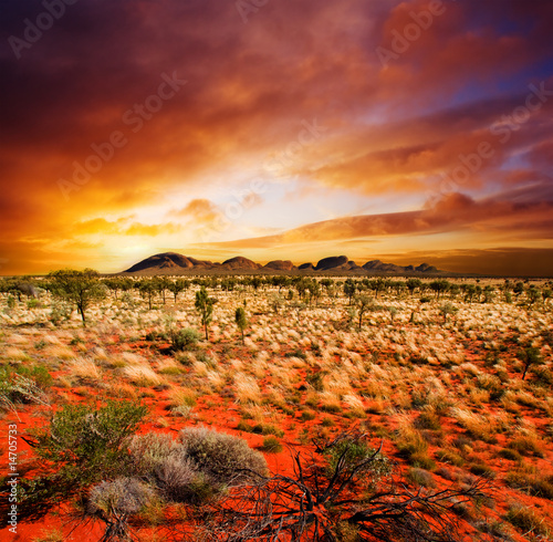 Foto op Canvas Australië Sunset Desert Beauty