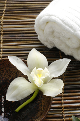 Fotobehang Spa White orchid in a spa