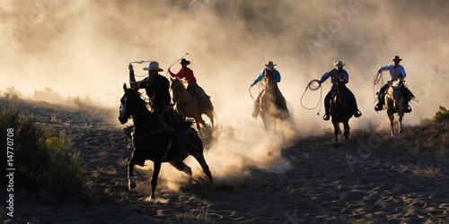 Fotografie, Obraz  Working The Ranch