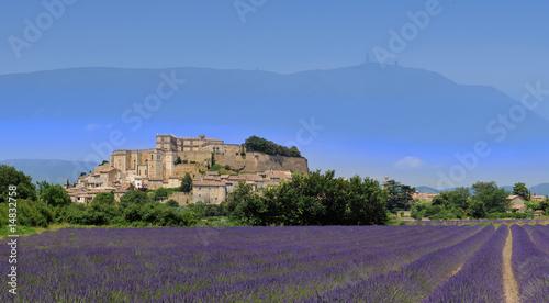 Tuinposter Lavendel lavande de grignan